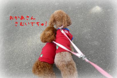 1026お散歩6