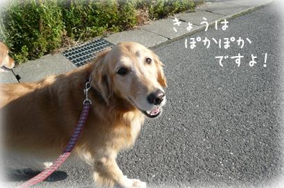 127お散歩2
