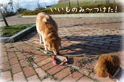 127お散歩5