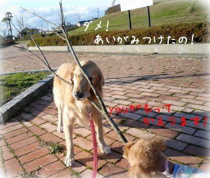 127お散歩7