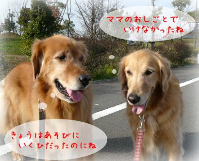 1210お散歩3