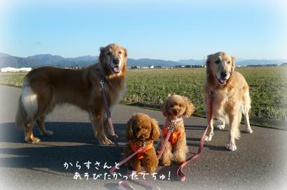 1216お散歩7