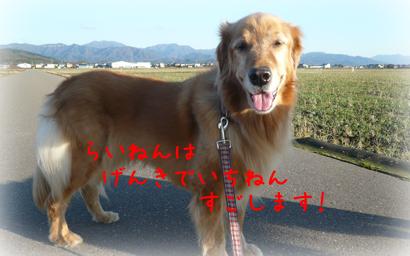 1216お散歩8