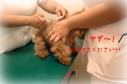 1222病院4
