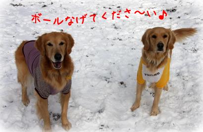 1226雪遊び6