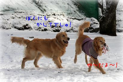 1226雪遊び9
