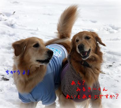 1226雪遊び10
