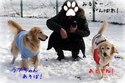 1226雪遊び13