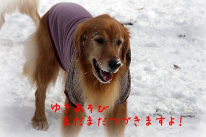 1226雪遊び21