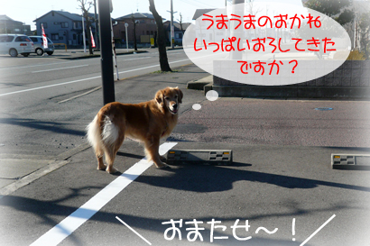 18お散歩2