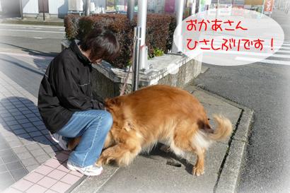 18お散歩3