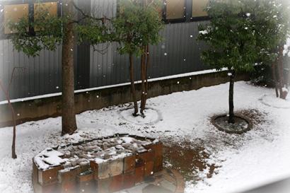 111雪景色1