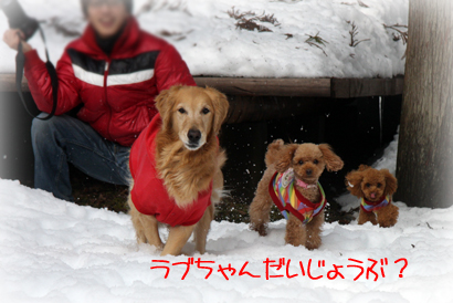 121雪遊び5