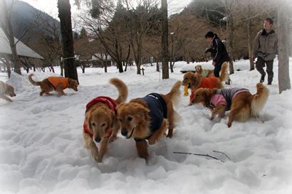121雪遊び10