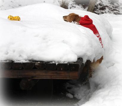 122雪遊び5