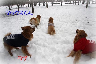 122雪遊び6