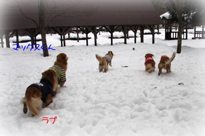 122雪遊び7