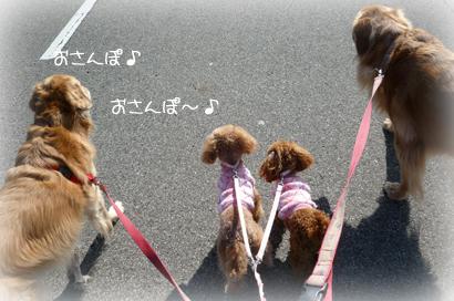 1,28お散歩4