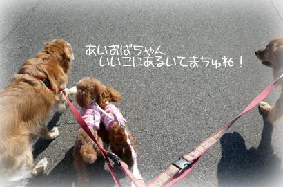 1,28お散歩5