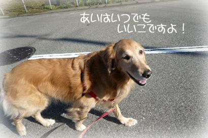 1,28お散歩6