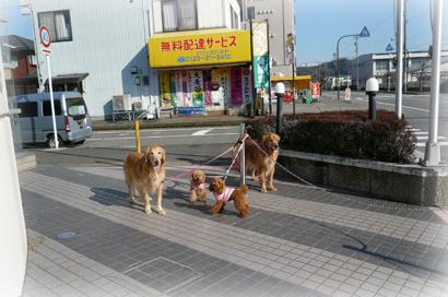 1,28お散歩10