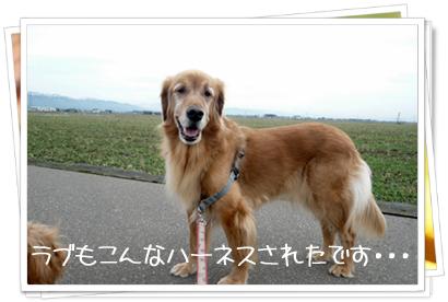 1,30お散歩3