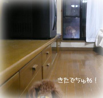 1,31まちぶせ4