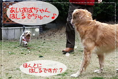 マッピーちゃん3
