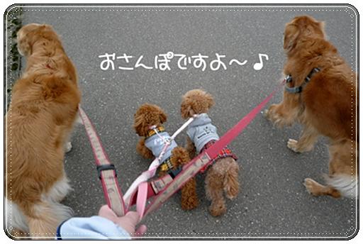 2,9お散歩2