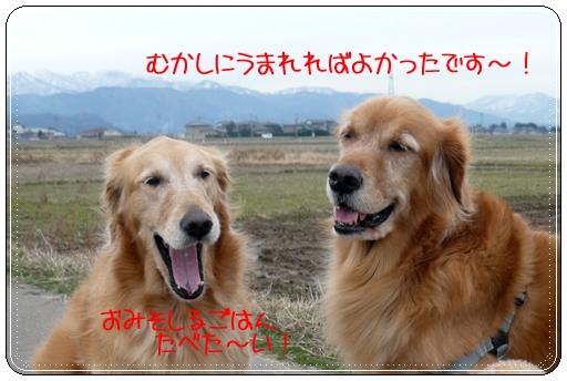 2,9お散歩7