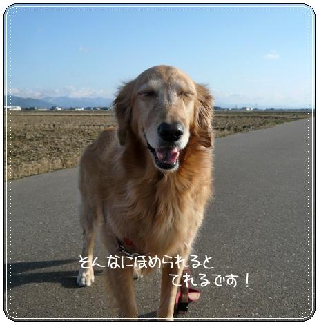 2,10お散歩6