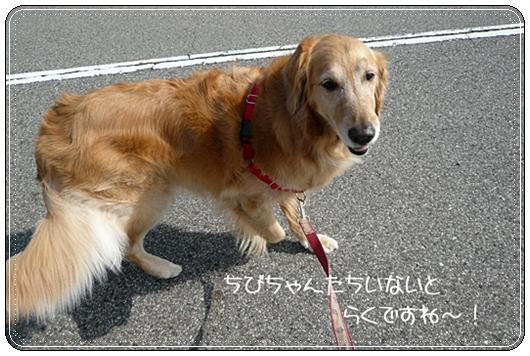 2,14お散歩3