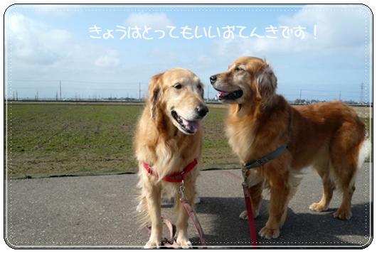 2,14お散歩5