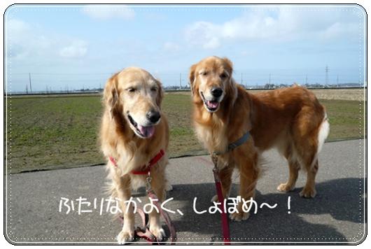 2,14お散歩6