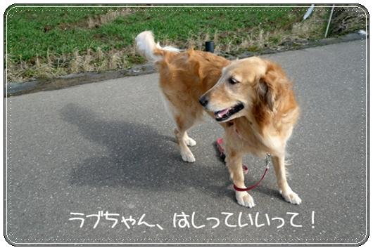 2,14お散歩7
