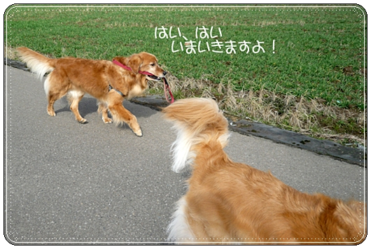 2,14お散歩8