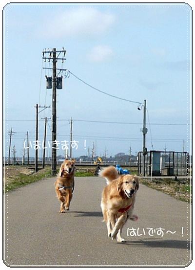 2,14お散歩9