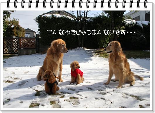 2,18雪遊び9