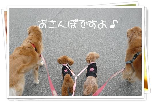 2,19お散歩2