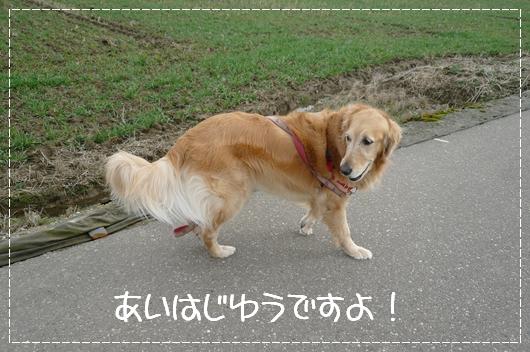 2,19お散歩4
