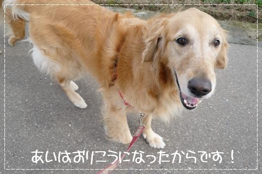 2,19お散歩5