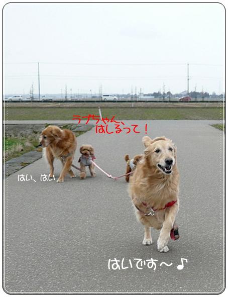 2,21お散歩2