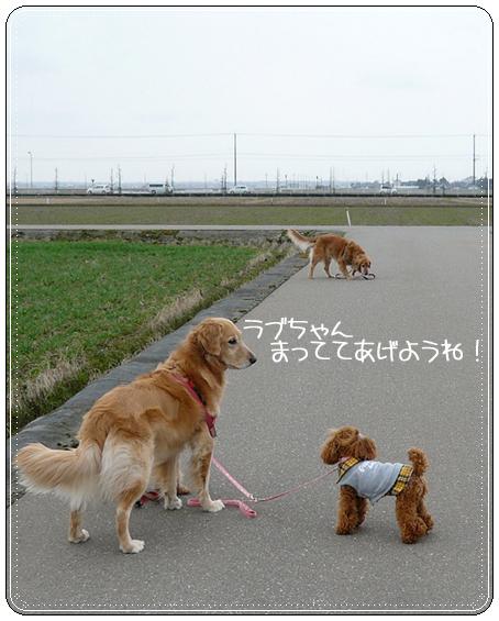 2,21お散歩4