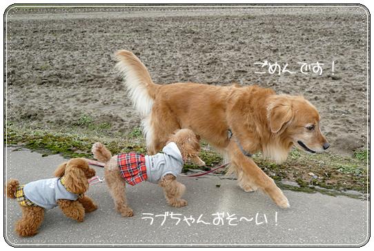 2,21お散歩8