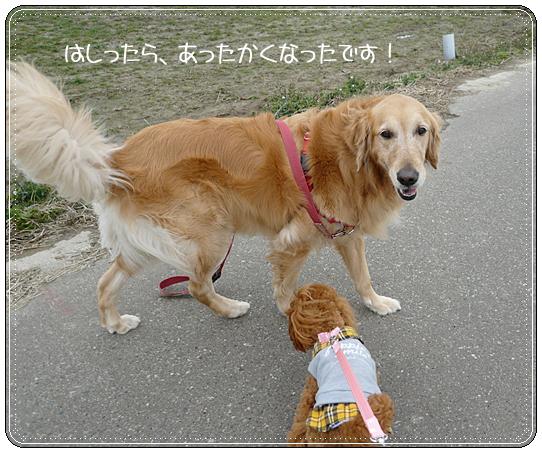 2,21お散歩9