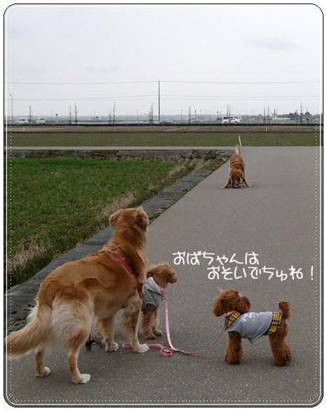 2,21お散歩5