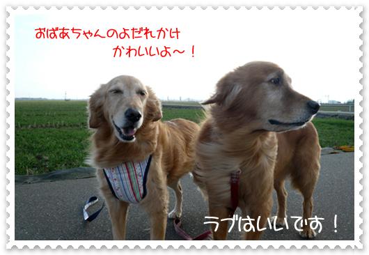 2,23お散歩8