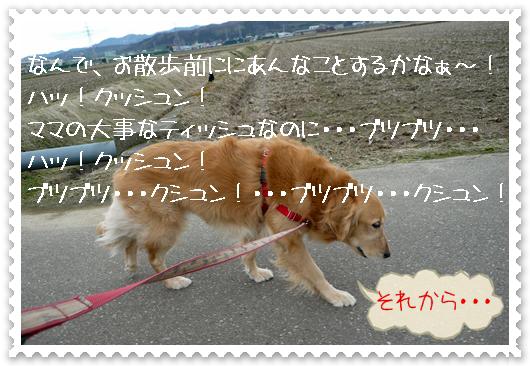 2,24お散歩5