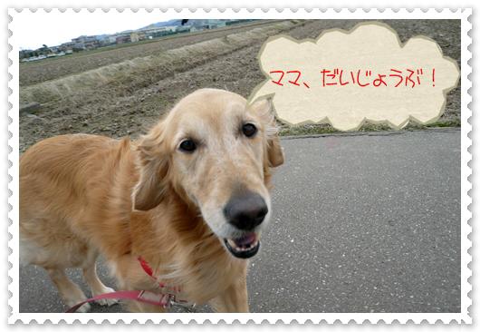 2,24お散歩7