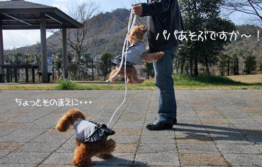 3,1京都6